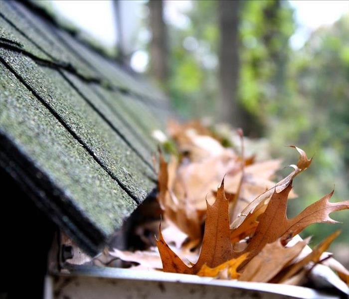 side of roof with gutters full of leaves